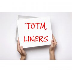 TOTM Organic Daily Liners